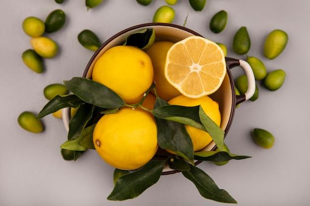 Draufsicht von zitronen der zitrusfrucht auf einer schüssel mit kinkans lokalisiert auf einer weißen wand
