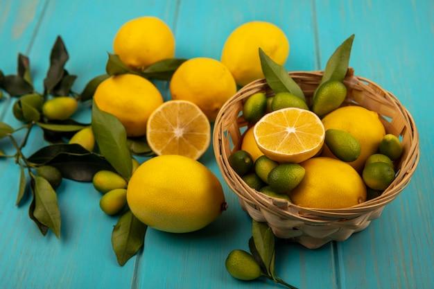 Draufsicht von zitrusfrüchten wie kinkans und zitronen auf eimer mit zitronen und kinkans isoliert auf einer blauen holzoberfläche