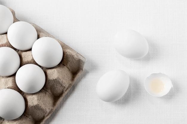 Draufsicht weiße eier im karton mit muscheln