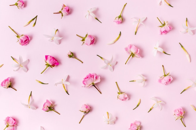 Draufsichtanordnung für rosenkonzept