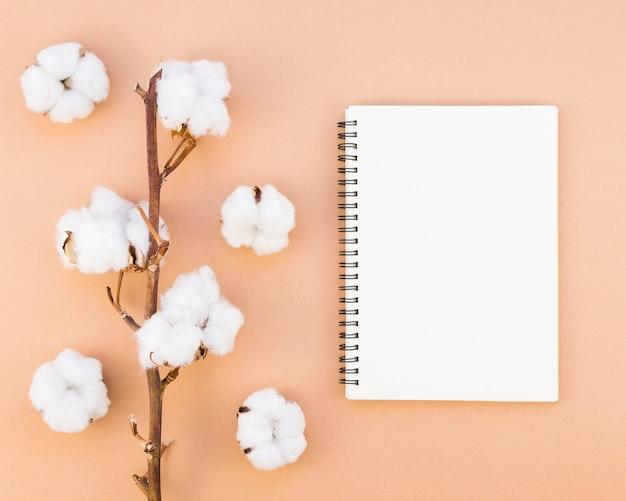Draufsichtanordnung mit baumwollblumen und notizbuch