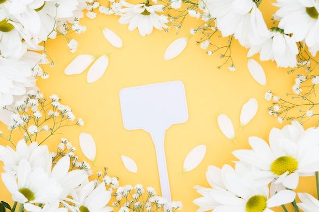 Draufsichtanordnung mit blütenblättern und gelbem hintergrund