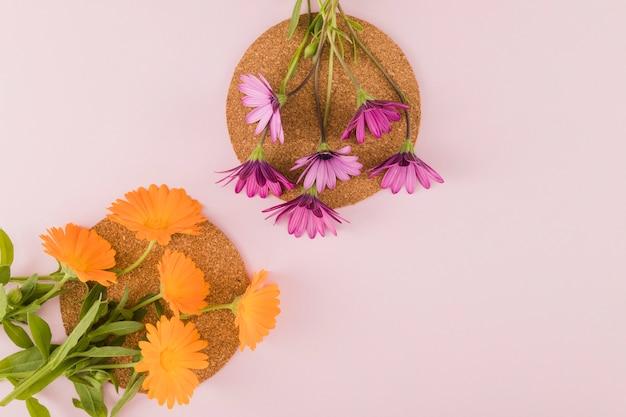Draufsichtblumen und -blumenblätter