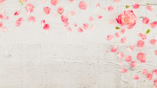 Draufsichtblumenblätter auf hölzernem hintergrund