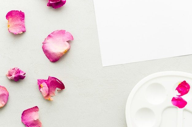 Draufsichtblumenblätter mit papier und sauberer palette