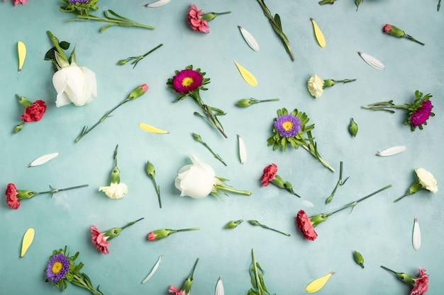 Draufsichtblumenblätter und frische blumen auf blauem hintergrund
