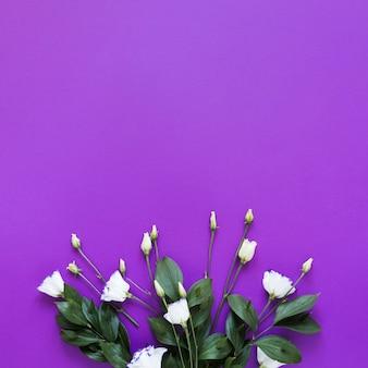 Draufsichtblumenstrauß von rosen auf violettem kopienraumhintergrund