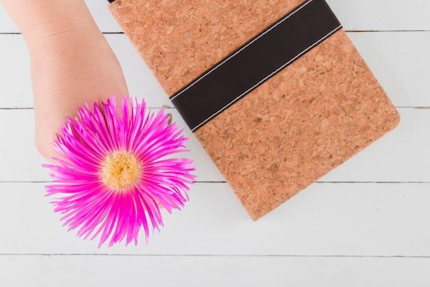 Draufsichtgänseblümchen und -notizbuch auf hölzernem hintergrund