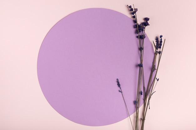 Draufsichtkopieraum-papierkreis mit lavendel