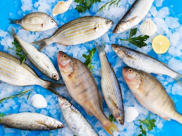 Draufsichtmischung von frischen fischen auf eis