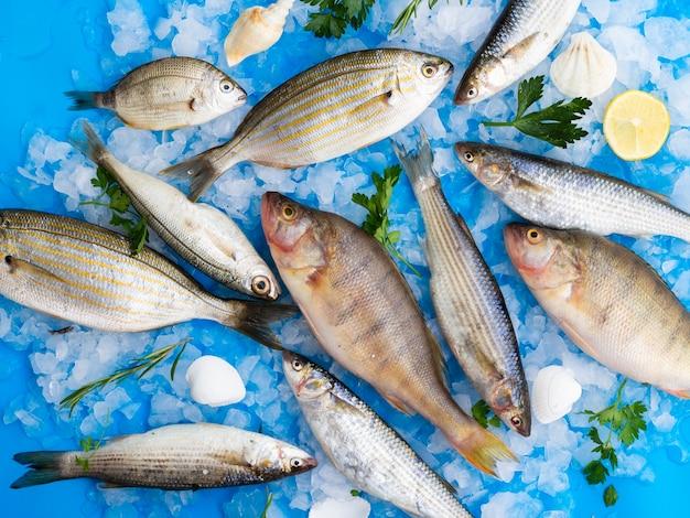 Draufsichtmischung von frischen fischen auf eiswürfeln