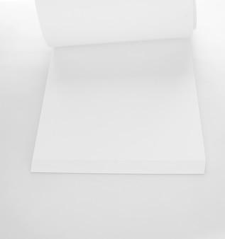 Draufsichtpalme verlässt baum lokalisiert auf weißem hintergrund