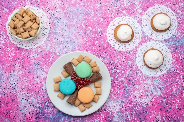 Draufsichtplätzchen und macarons innerhalb platten auf der bunten hintergrundkuchen-keksfarbe süß