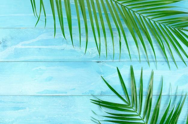 Draufsichtsommerhintergrund mit palme