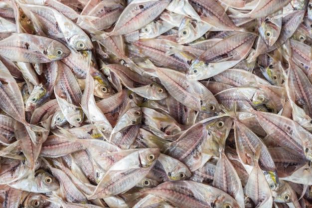Draufsichtstapel fischskelett nach dem filleting. essen hintergrund