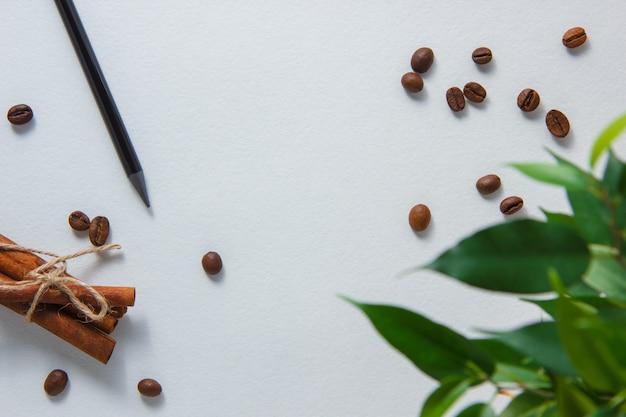 Draufsichtstift mit kaffeebohnen, trockenem zimt, pflanze auf weißem hintergrund. horizontal