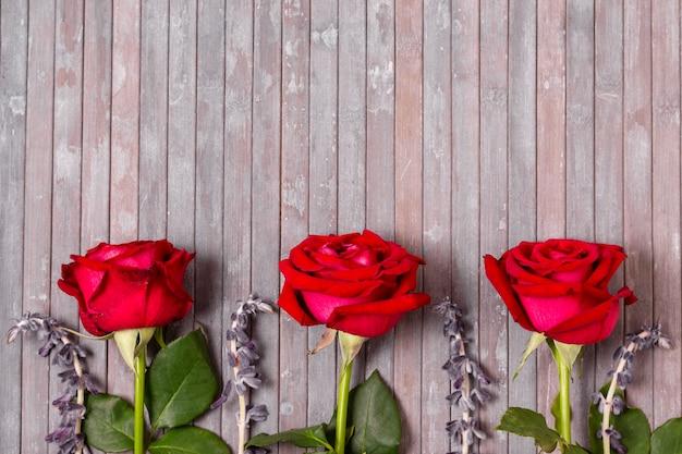 Draufsichtzusammenstellung von rosen mit kopienraum