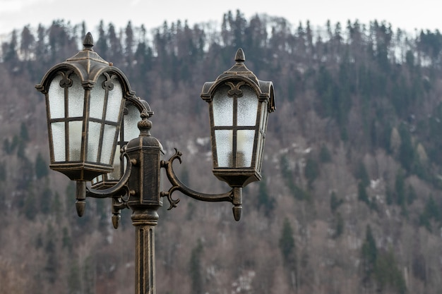 Draußen weinleselampenpfosten mit niederlassungen im hintergrund