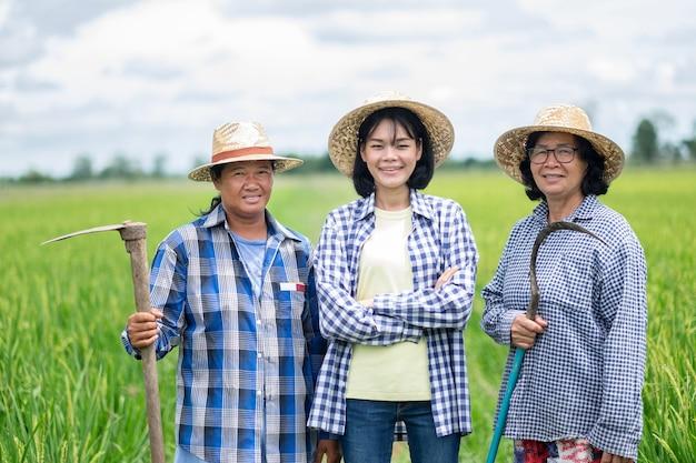 Drei asiatische bauernfrauengruppe, die an reisgrünfarm steht
