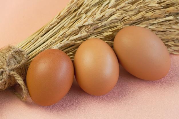 Drei eier mit brauner schale vor verschwommener getrockneter blume auf pastellfarbenem hintergrund