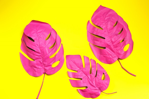Drei gemaltes tropisches palmblatt von monstera auf gelb