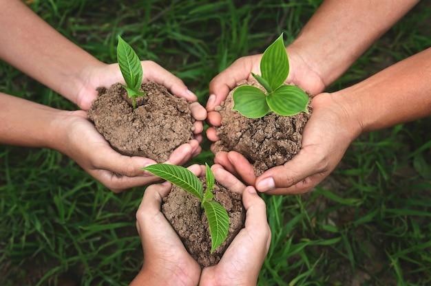 Drei handgruppe, die kleinen baum hält, der auf schmutz mit grünem grashintergrund wächst. öko-tag der erde konzept