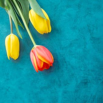 Drei helle tulpenblumen auf blauer tabelle