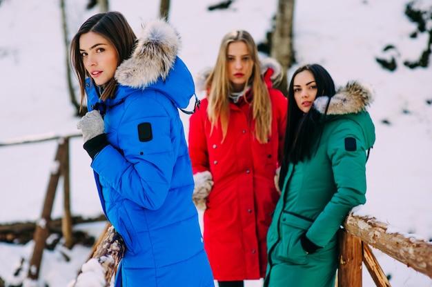 Drei junge frauen in winterbergen