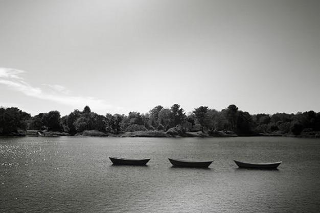 Drei kanus