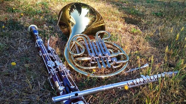 Drei musikinstrumente hornfagottflöte auf dem rasen