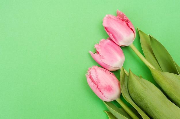 Drei rosa tulpen auf einem grün