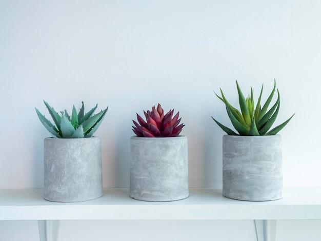Drei runde betonpflanzentöpfe mit roten und grünen sukkulenten auf weißem holzregal einzeln auf weißer wand mit kopierraum. kleiner diy zementübertopf für kakteen, sukkulenten oder blumen.