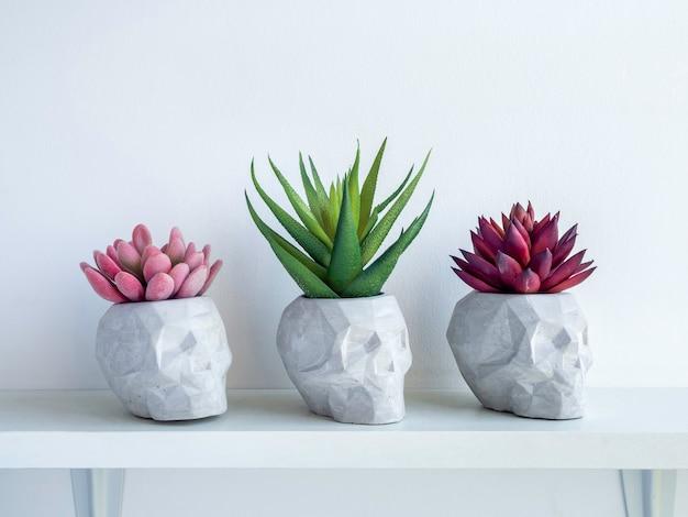 Drei schädelförmige betonpflanzentöpfe mit roten, rosa und grünen sukkulenten auf weißem holzregal einzeln auf weißer oberfläche mit kopierraum. kleine moderne diy-zementpflanzer trendige dekoration.