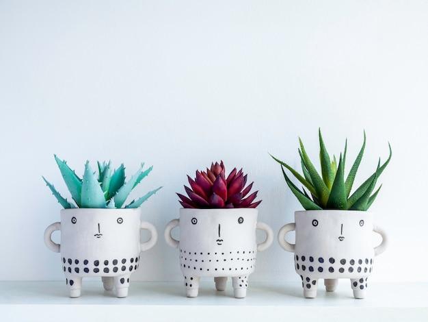 Drei süße gesichtstöpfe aus keramik mit roten und grünen sukkulenten auf weißem holzregal einzeln auf weißer wand mit kopierraum. kleine moderne diy-zementpflanzer trendige dekoration.