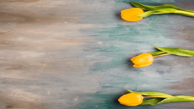 Drei tulpenblumen auf grauer tabelle