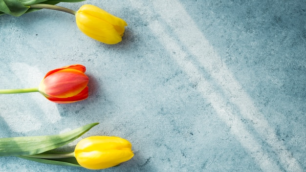 Drei tulpenblumen auf tabelle
