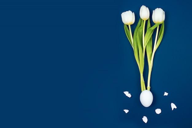 Drei weiße tulpen schlüpften aus dem ei und um die schale. auf einem blauen hintergrund