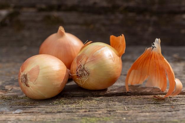 Drei weiße zwiebeln auf einem alten moosigen brett. nahansicht