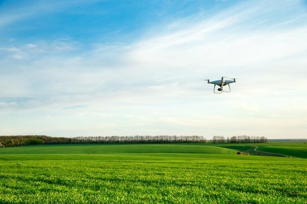 Drohne fliegt über grünes weizenfeld im frühjahr