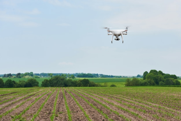Drohnen-quad-copter mit hochauflösender digitalkamera auf grünem maisfeld,