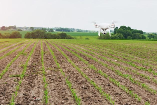 Drohnen-quad-copter mit hochauflösender digitalkamera auf grünem maisfeld