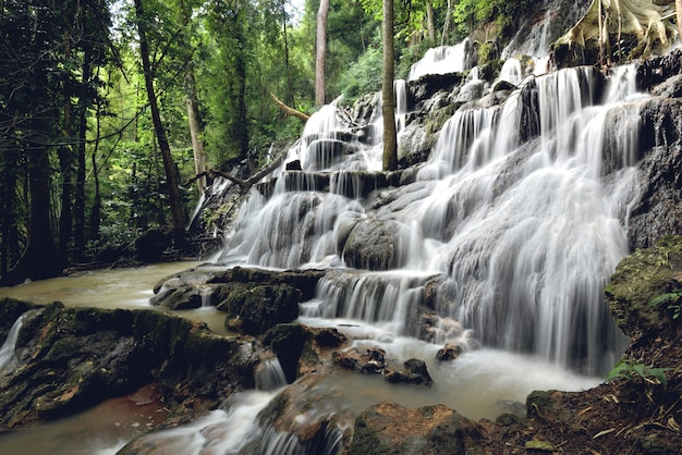 Dschungel-flussstrom des wasserfalllandschaftswaldberges und des bambusbaums wilder tropischer wasserfallthailand auf dem felsen