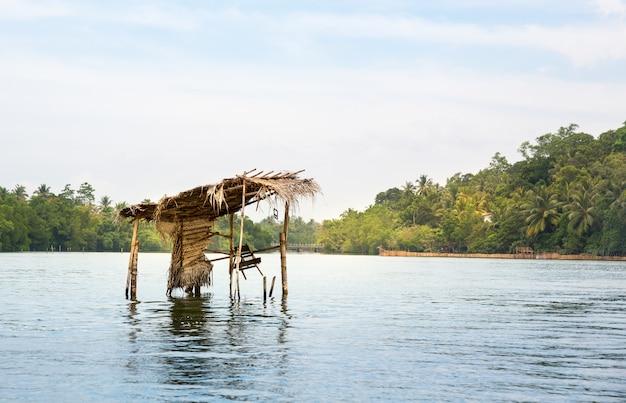 Dschungelfluss und tropischer wald, ceylon-landschaft. sri lanka landschaft
