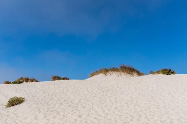 Dünen am strand mit blauem himmel und weißem sand