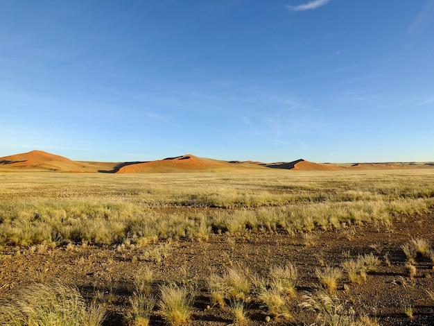 Dünen in der namib wüste, sossusvlei, namibia