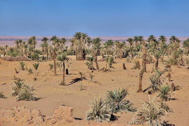 Dünen in timimun verlassene stadt in der sahara-wüste, algerien