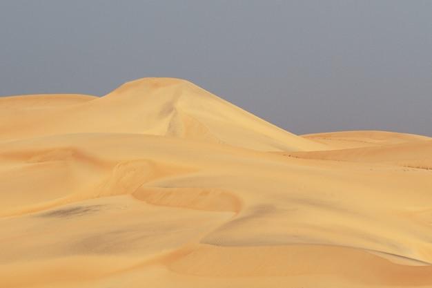 Dünen wüste