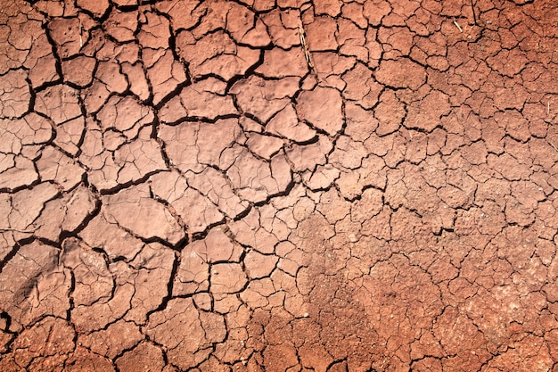 Dürre, der boden knackt
