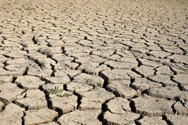 Dürre. der trockene grund des sees, der boden ist mit der textur von rissen bedeckt. perspektivische ansicht.