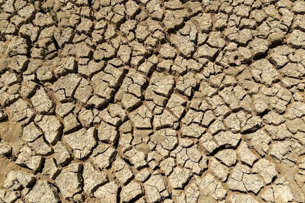 Dürregebiet der ökologie und der umwelt